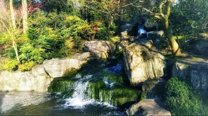 Waterfalls Kyoto Garden_Holand Park_London